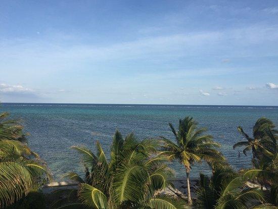 Oasis del Caribe: photo5.jpg