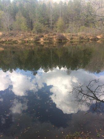 Jackson, GA: beautiful reflection
