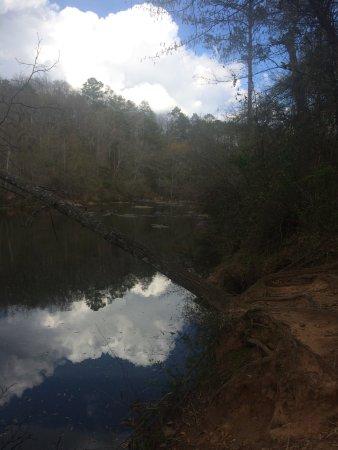 Jackson, GA: nice scenery