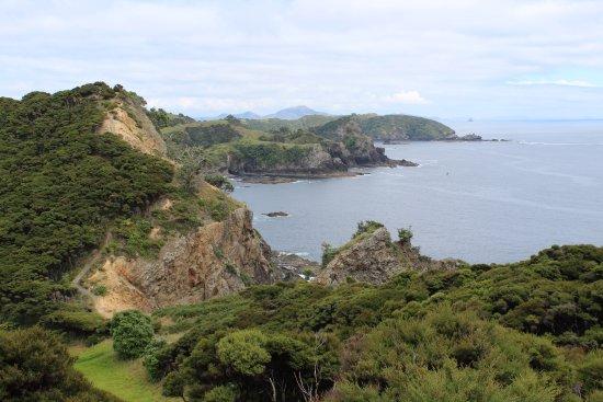 Paihia, New Zealand: Beautiful coast lines