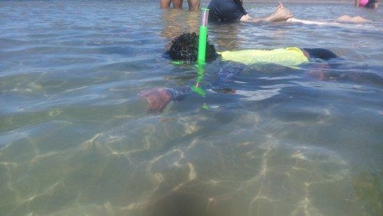 Marau, BA: Mergulho para todas as faixas etarias