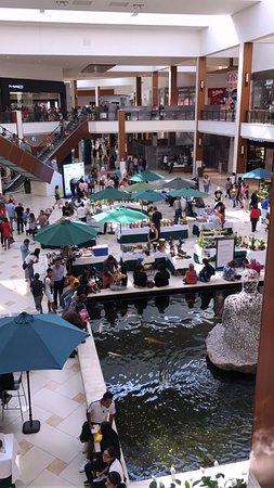 Aventura Mall: courtyard