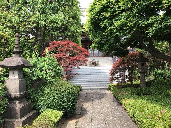 Kongouji Temple (Momijidera)