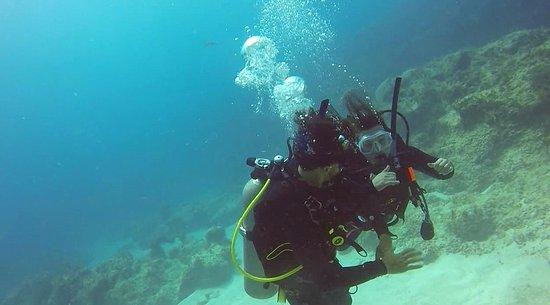 Dressel Divers : Aprendendo!!