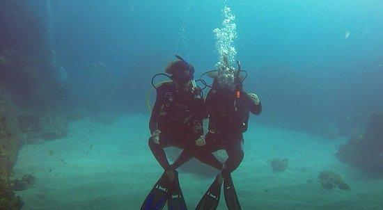 Dressel Divers : Meditación subacuatica
