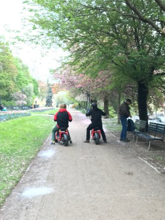 Prague Segway Tours: Pathway under the blooming trees