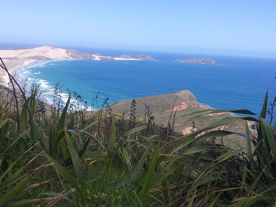 Kaitaia, Nueva Zelanda: Magnificent scenery at the top of the Cape.