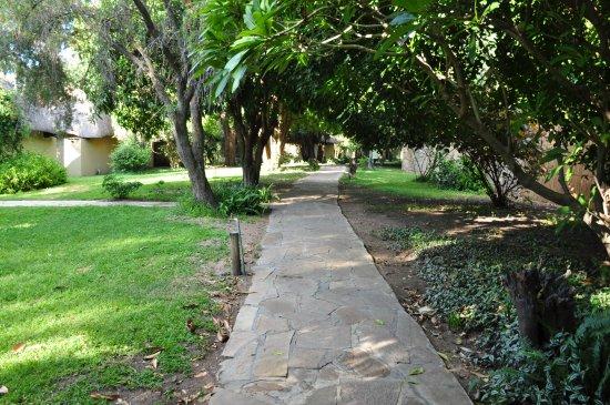 Namushasha River Lodge: Grounds well kept and restful