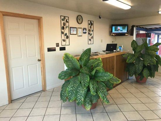 Shamrock, Техас: office