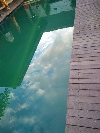 Bali Swiss Villa: IMG20170509063841_large.jpg