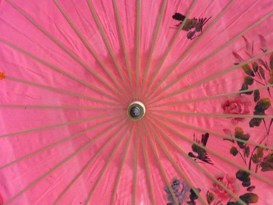 Oaks, Pensilvania: Umbrella