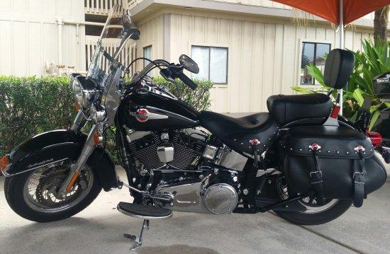 Kauai Harley Davidson