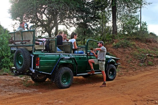 Balule Nature Reserve, Sudáfrica: Taking you on safari!