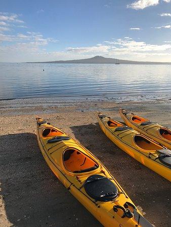 Auckland Sea Kayaks: photo1.jpg
