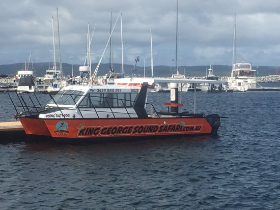 Albany, Australia: 9.5 meter old sea rescue cat very stable and big full enclosed cab
