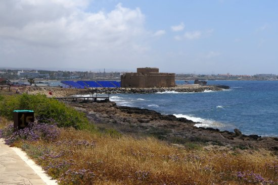 Paphos Municipal Beach : Paphoss harbour from the north promenade