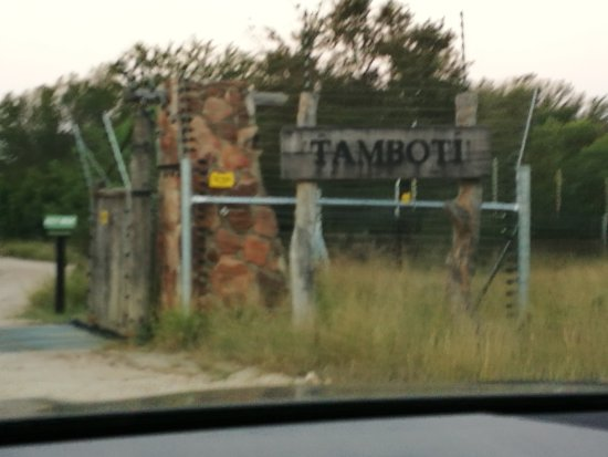 Gambar Tamboti Satellite Camp