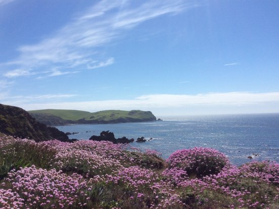 Walk from Hope Cove to Thurlestone
