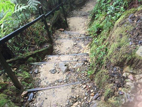Kota Kinabalu District, Malaysia: Kinabalu mt