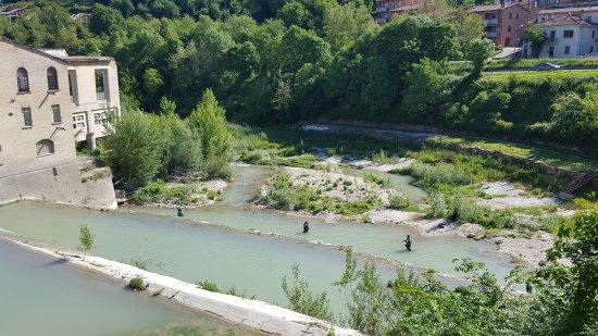 Fermignano, อิตาลี: il fiume Metauro