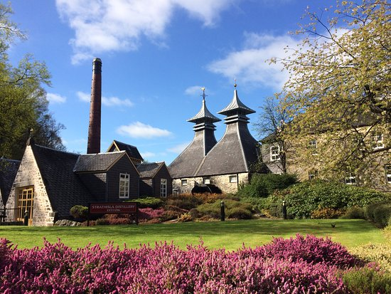 Dunblane, UK : On tour in Speyside, at beautiful Strathisla Distillery