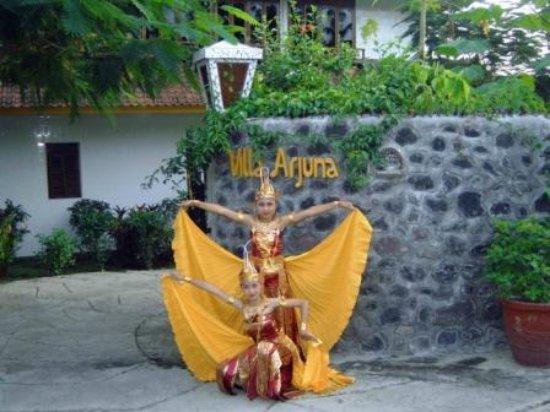 写真Villa Arjuna枚