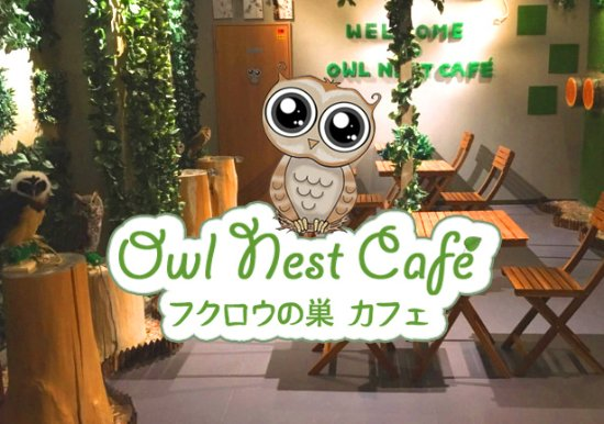 Owl Nest Cafe