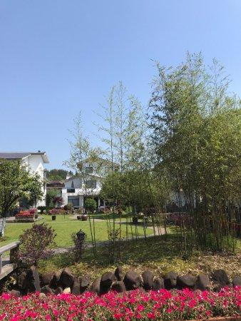 Wuyi Shan, China: Garden