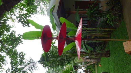 Banana Fan Sea Resort: BFS May 2017