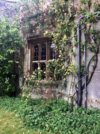 Thornbury, UK: photo7.jpg