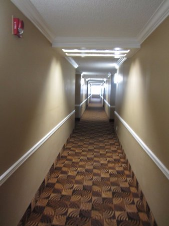 Coliseum Inn: Another hallway