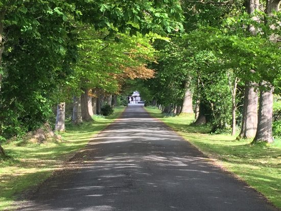 Caersws, UK: Entrance drive
