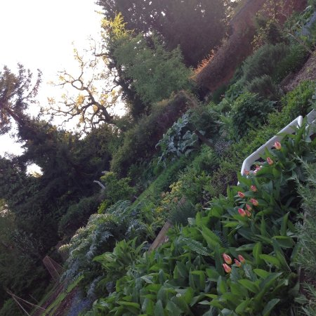 Bed and Breakfast at Woodbrooke: Walled Kitchen Garden