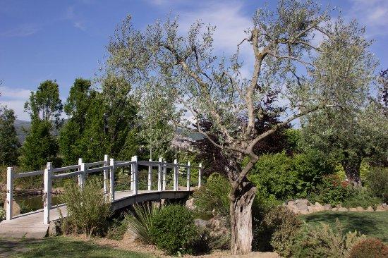 Giardino con laghetto foto di villa domus petra - Giardino con laghetto ...