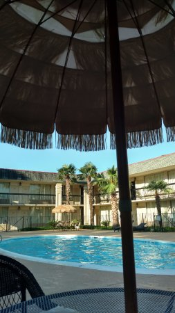Thibodaux, لويزيانا: Outside by the pool!