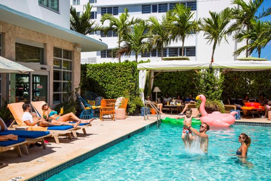 Circa 39 Hotel (Miami Beach, Florida) - Reviews, Photos & Price Comparison - TripAdvisor