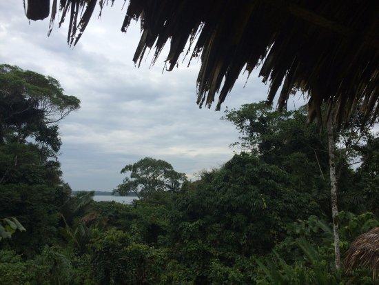 Limoncocha, Ecuador: excelentes vistas desde la terraza a la Laguna