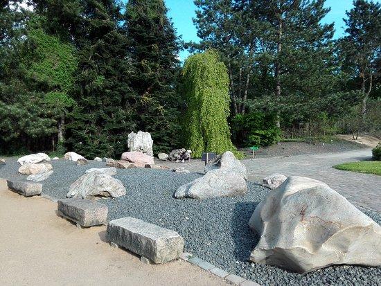 granitplatten garten, granit - picture of loki schmidt garten botanical garden, hamburg, Design ideen