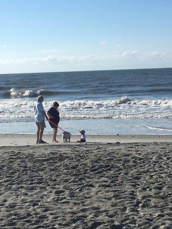 Folly Beach, Νότια Καρολίνα: photo3.jpg