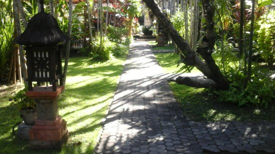 Bumi Ayu Bungalows: the walk up to the pool this is the garden
