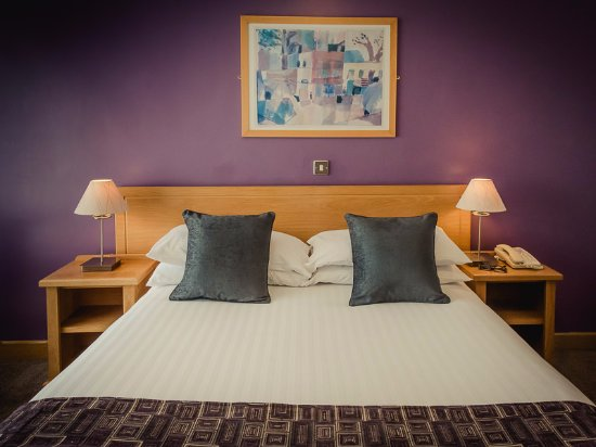 Viking Hotel Waterford Photo
