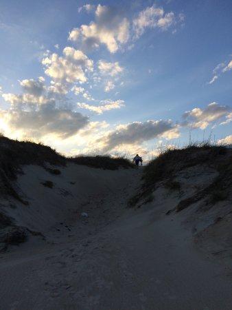Ocracoke Campground: photo5.jpg