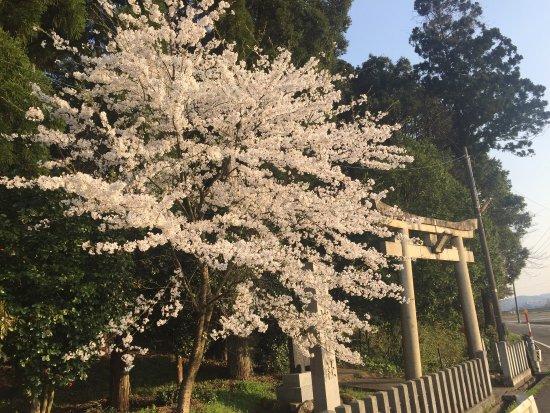 Kihi Shrine