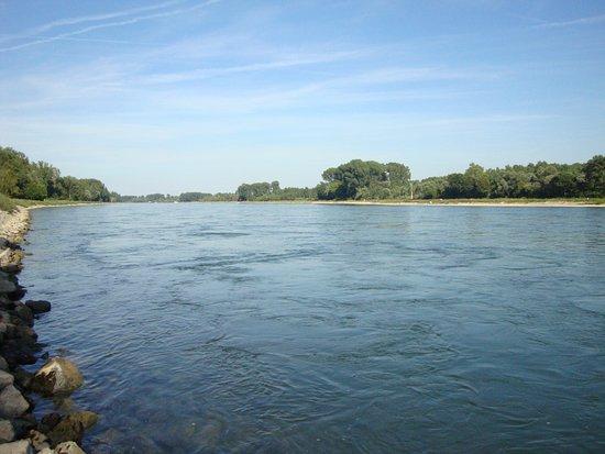 Au Bord du Rhin: Rhein