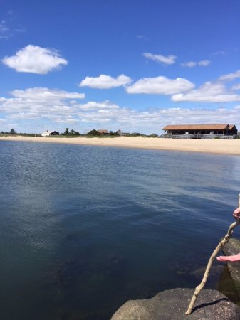 Madison, CT: The beach from the jetty