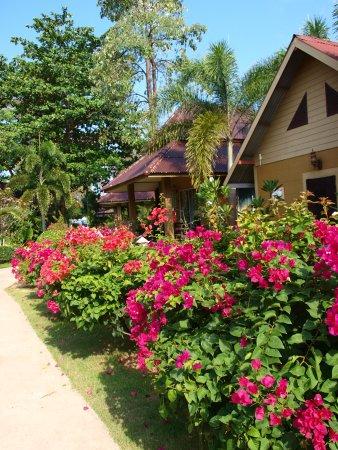 Lanta Castaway Beach Resort Picture