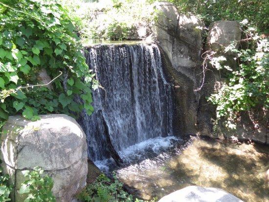 Cameron Park Zoo: Waterfall at zoo