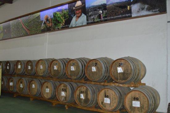 Madalena, Portugal: Envelhecimento dos vinhos licorosos