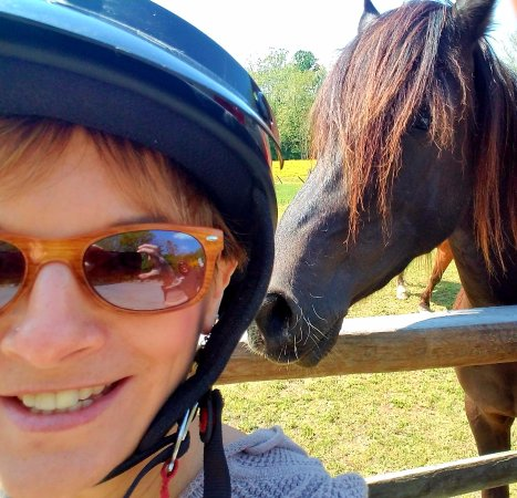 Strasburg, PA: Selfie with the horse