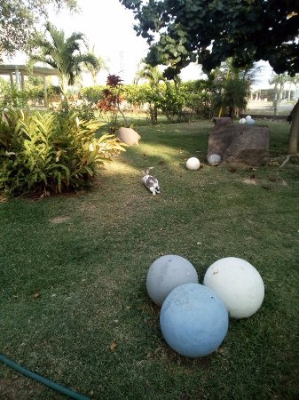 Puerto de Luna Pet Friendly and Family Suites-billede